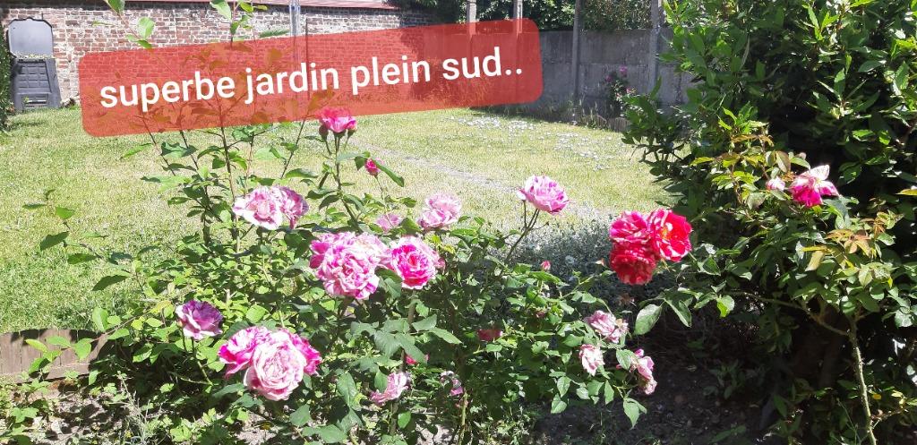 Vente maison 59120 Loos - LOOS PROCHE CHR  LARGE ET LUMINEUSE  T6, GARAGE, JARDIN...