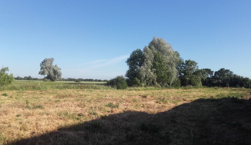 Vente terrain 59211 Santes - Terrain, Santes.